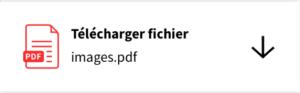 Smallpdf : télécharger fichier