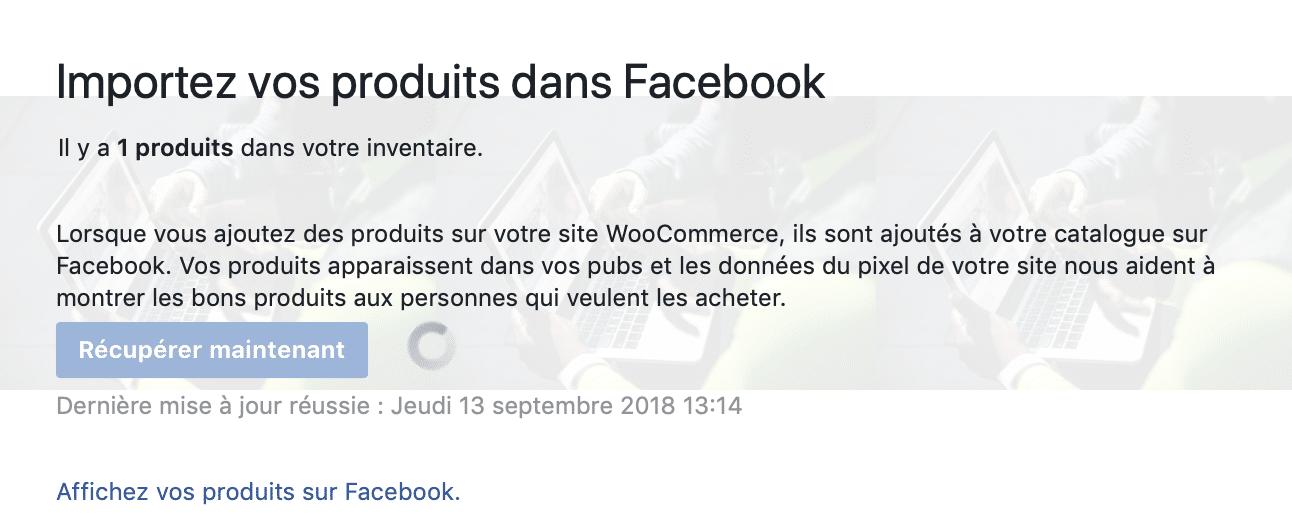 Facebook - synchronisation catalogue WooCommerce